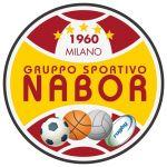 logo_nabor